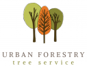 Urban Forestry Tree Service | Denver, CO